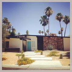 Now this is an idea - how about even bigger squares of concrete staggered?  Less mowing; put grass or whatever in between, not the pebble aggregate.  Hmmm Mika Lequericabeascoa | Palm Springs Mid Century Modern