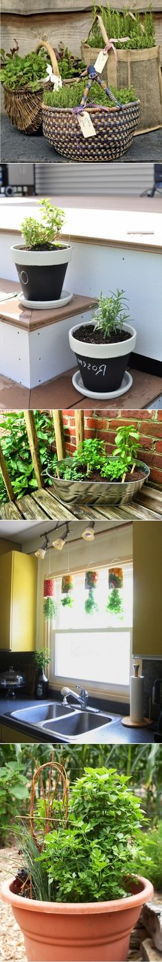 DIY Herb Gardens - I like the top one. The nifty hanging cans over the sink are pretty groovy too. Diy Herb Garden, Love Garden, Summer Garden, Garden Planters, Dream Garden, Home And Garden, Organic Gardening, Gardening Tips, Ideas Prácticas