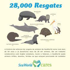 O SeaWorld é uma das principais organizações de zoológico do mundo e líder em tratamento e bem-estar de animais, treinamentos e cuidados veterinários. A companhia mantém uma das mais bem-sucedidas equipes de resgate de animais e tem liderado diversos avanços no cuidado de espécies em...