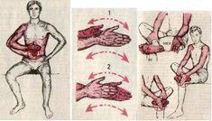 Тибетская гормональная гимнастика упражнения