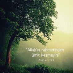 """""""Allah'ın rahmetinden ümit kesmeyin!"""" Zümer. 53"""