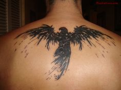 Eagle Tattoo Upper Back Aqua tattoos