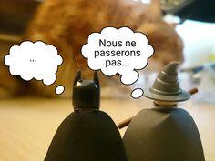 Batman et Gandalf vs Pixel Le chat / lego dimensaion / chat vs lego !