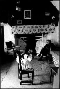 Elliott Erwitt - Irish Countryside. 1962.