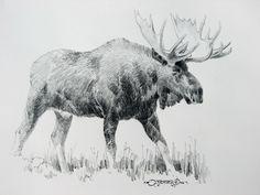 moose - Поиск в Google