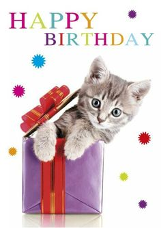 Looking for for inspiration for happy birthday friendship?Browse around this site for unique happy birthday ideas.May the this special day bring you happy memories. Happy Birthday Kitten, Funny Happy Birthday Song, Happy Birthday Greetings Friends, Happy Birthday Ecard, Happy Birthday Wishes Images, Happy Birthday Celebration, Happy Birthday Pictures, Birthday Quotes, Birthday Clips