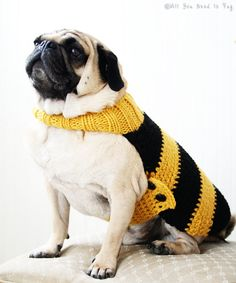 Bumble Bee Dog Sweater http://europug.eu/product/bumble-bee-dog-sweater/