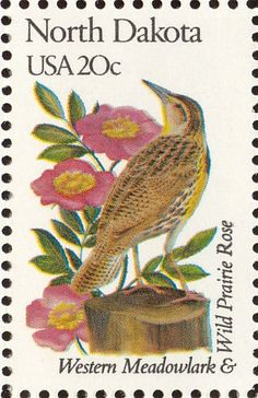 The western meadowlark is the state bird of North Dakota and the Wild Prairie Rose is the state flower of North Dakota.
