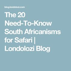 The 20 Need-To-Know South Africanisms for Safari | Londolozi Blog