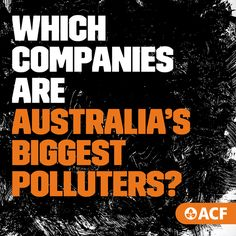 These companies are polluting our air, our water, our ecosystems and our communities. There's only a handful of them, making a quick buck while they still can. And even worse – some are actively lobbying against cutting pollution. Climate Change, Conservation, Foundation, Water, Gripe Water, Conservation Movement, Foundation Series, Aqua, Canning