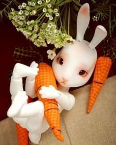 Curo Basic - White Rabbit...by Pipos