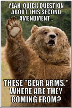 Bear arms. haha I don't know why I laughed so hard