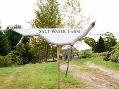 Salt Water Farm Cooking School - Cooking Classes in Maine - Country Living Cooking School, Cooking Classes, Deer Farm, Salvaged Decor, Farm 2, Handmade Greetings, Salt And Water, Getting Out, Country Living