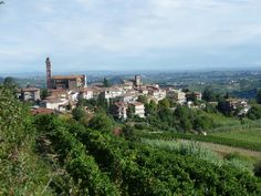 On this inn to inn walking tour, you explore the beatiflly tranquil Langhe region of Italy's Piedmont - a gastronomic gem undiscovered by most tourists.  Its florious countryside is a mix of gently rippling, wave-shaped hills cloaked by layers of vines, sunflowers and oak forests, crowned with honey-hued hamlets and imposing Savoy castles. Piedmont's Gastronomic Barolo Walk http://www.breakaway-adventures.com/walking/italy/piedmonts-gastronomic-barolo-walk.html
