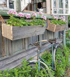 """Pelargonie w oknie muszą być! Drewniane donice """"w klimacie""""by @g_e_r_o_ #zielonachatka #staredrewno #stareokna #pelargonia #pelargonium #mycottagehouse #tv_rustic #tv_retro"""