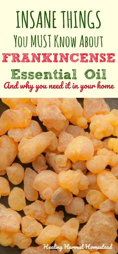 Why would anyone want to use frankincense essential oil? Find out the incredible benefits and uses of frankincense essential oil, PLUS how to use it. Why do you need Frankincense essential oil in your home? Find out all the things to know about Frankincen Frankincense Essential Oil Uses, Frankincense Benefits, Doterra Essential Oils, Young Living Essential Oils, Doterra Frankincense, Yl Oils, Diy Candles Essential Oils, Healing Oils, Essential Oils