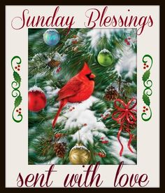 252 best christmas greetings sayings images on pinterest sunday m4hsunfo