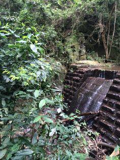 Após uma praia maravilhosa no RJ, que tal curtir uma cachoeira? Esta é a Represa do Quebra, bem na subida das Paineiras pelo Horto. A Represa fica do ladinho da Cascata do Quebra - Quebra Waterfall.