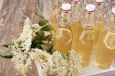 Dit recept resultaat in ongeveer 2liter vlierbloesemsiroop. Als de bloemen heel wit zijn en het stuifmeel heel erg geel kleurt dan heeft u de beste vlierbloesem.