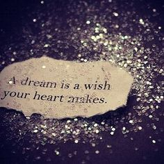 ...a dream is a wish your heart makes