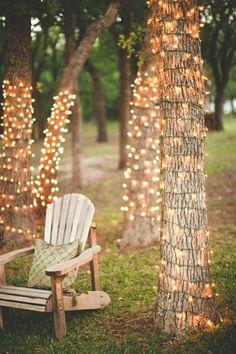 Lights around big tree in garden at Christmas
