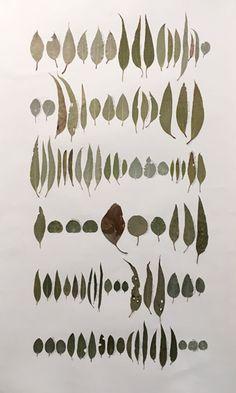 Eucalyptus dye research undertaken at the Australian National Botanical Gardens Henna Tattoo Hand, Hand Tattoos, National Botanical Gardens, Leaf Drawing, Natural Dyeing, Eucalyptus Leaves, Watercolor Print, Sally, Surfboard