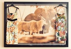 """My favorite floral Dolce & Gabbana dresses hanging on a Peter Beard photograph."" http://www.thecoveteur.com/veronica-miele-beard/"