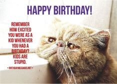 Funny Birthday Wishes & Funny Birthday Quotes: Funny Birthday Messages Sarcastic Birthday Wishes, Funny Birthday Message, Happy Birthday Wishes Messages, Happy Birthday Wishes For A Friend, Birthday Poems, Happy Birthday Cards, Funny Messages, Silk Knickers, Funny Stuff