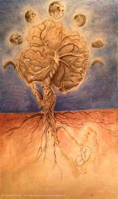 Placenta Print Art by GoodnessGathered on Etsy
