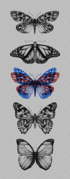 Butterfliez by Anderson Alves, via Behance