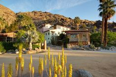 Palm Springs Vacation Rentals. View of looking over at Guest Houses & Street of Spain.