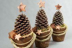 Čarovanie so šiškami, namiesto drahých ozdôb z obchodu: pine cones you can do the most beautiful things. The 10 most beautiful deco … - Christmas Crafts Diy Homemade Christmas, Diy Christmas Gifts, Christmas Time, Pine Cone Crafts, Christmas Crafts, Christmas Ornaments, Primitive Christmas, Rustic Christmas, Pine Cone Decorations
