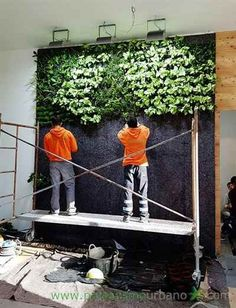 The first week of January 2016 Paisajismo Urbano has finished the construction of two vertical ecosystems in Elche (Spain).This project, for the shoes company Porronet, . Planting Bulbs In Spring, Spring Bulbs, Vertical Garden Wall, Vertical Gardens, Garden Solutions, Building A Pergola, Garden Journal, Landscape Walls, Small Patio