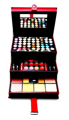 SHANY Cosmetics  2013 Triple Layer Makeup Palette in Case