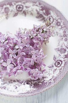 •ԼƛᐯᏋƝᗪᏋƦ•ԼᎥԼԼƛᏣ•ᎥƝƝ•✿ڿڰۣ lilac Inspiration Gallery   Every Last Detail Blue Lavender color Лаванда