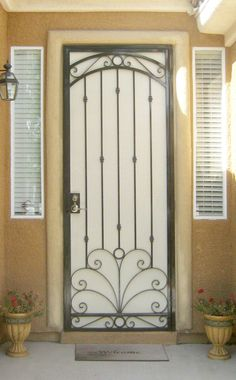 Wrought Iron Double Screen Doors