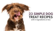 Looking for some simple dog treat recipes? Here's 23 homemade dog treat recipes, all made with 5 ingredients or less. From grain free to frozen treats these