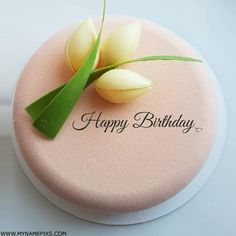 Write Name on Beautiful Birthday Wishes Cake Picture
