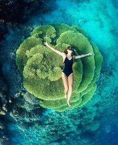 Hotels-live.com/cartes-virtuelles #MGWV #F4F #RT #worldbestshot Bunaken Island Manado Sulawesi Indonesia. Pic by @chelseakauai   FOLLOW @worldbestshot AND TAG YOUR BEST SHOTS #worldbestshot #worldbestshot_ig TO BE FEATURED. ____________________________________ by worldbestshot https://www.instagram.com/p/BF6w2dYtt-9/