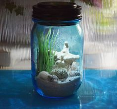 ♥´¨) ¸.•´ ¸.•*´¨)¸.•*¨) (¸.•´ (¸.•`♥~ Here is a little beach in a bottle for you. Beautiful light blue BALL Mason Jar with Solar lid. Your will love this Nightlight terrarium. Perfect for home or office, dorm, kitchen, bathroom, kids rooms and anywhere else you would like a night light!. You may want them all over the house. Beautiful light blue jar. Includes shells shown, sand and Lichen moss, Baby Knobby Starfish and an artificial plant so there is no upkeep necessary for this one. See…