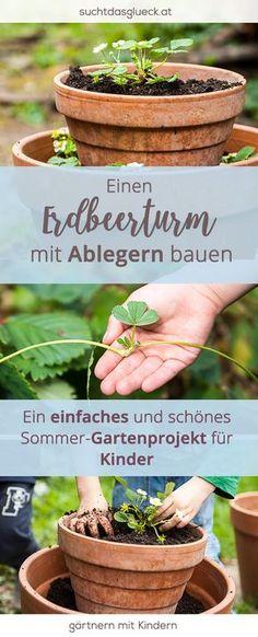 Gartenprojekt für Kinder: Einen Erdbeerturm bauen (mit eigenen Ablegern) - Gartnern mit Kindern - Garten für Kinder - Fräulein im Glück der nachhaltige Mamablog