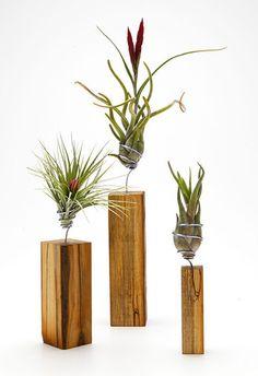 Airplantman AirplantVessel (wood)