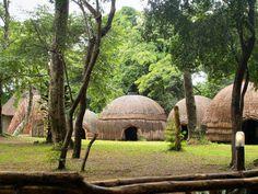 A Zulu village
