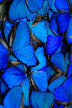 #KlauVazkez #Blue #Sky #Ocean