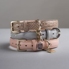Cute Dog Collars, Dog Collar Tags, Dog Collars & Leashes, Collars For Women, Leather Dog Collars, Girl Dog Collars, Dog Accesories, Pet Accessories, Le Lou