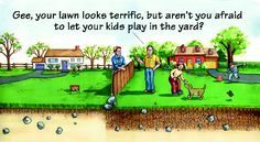organic lawn care from tlc tlc has an organic lawn care program that ... .