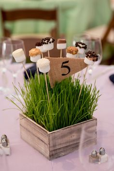 Rustic Wheatgrass and Marshmallow Centerpiece for Camp Color War Bat Mitzvah at Temple Rodef Shalom in Falls Church, VA Bar Mitzvah Themes, Bar Mitzvah Party, Bat Mitzvah Centerpieces, Party Centerpieces, Bar Mitzvah Decorations, Grass Centerpiece, Centerpiece Ideas, Marshmallow Centerpieces, Table Camping