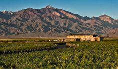 Blog OMG - I'm Engaged - Destino de lua de mel para amantes de vinho - Mendoza, Argentina. Honeymoon.