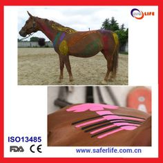 Kinesio Tape for Sports Horse Therapy
