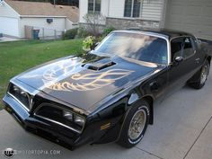 Black with gold bird, 1978 Pontiac Trans Am...The car I bought when I got married to my 1st husband.Had to sell it when I got pregnate, since a car seat didnt work well in it.